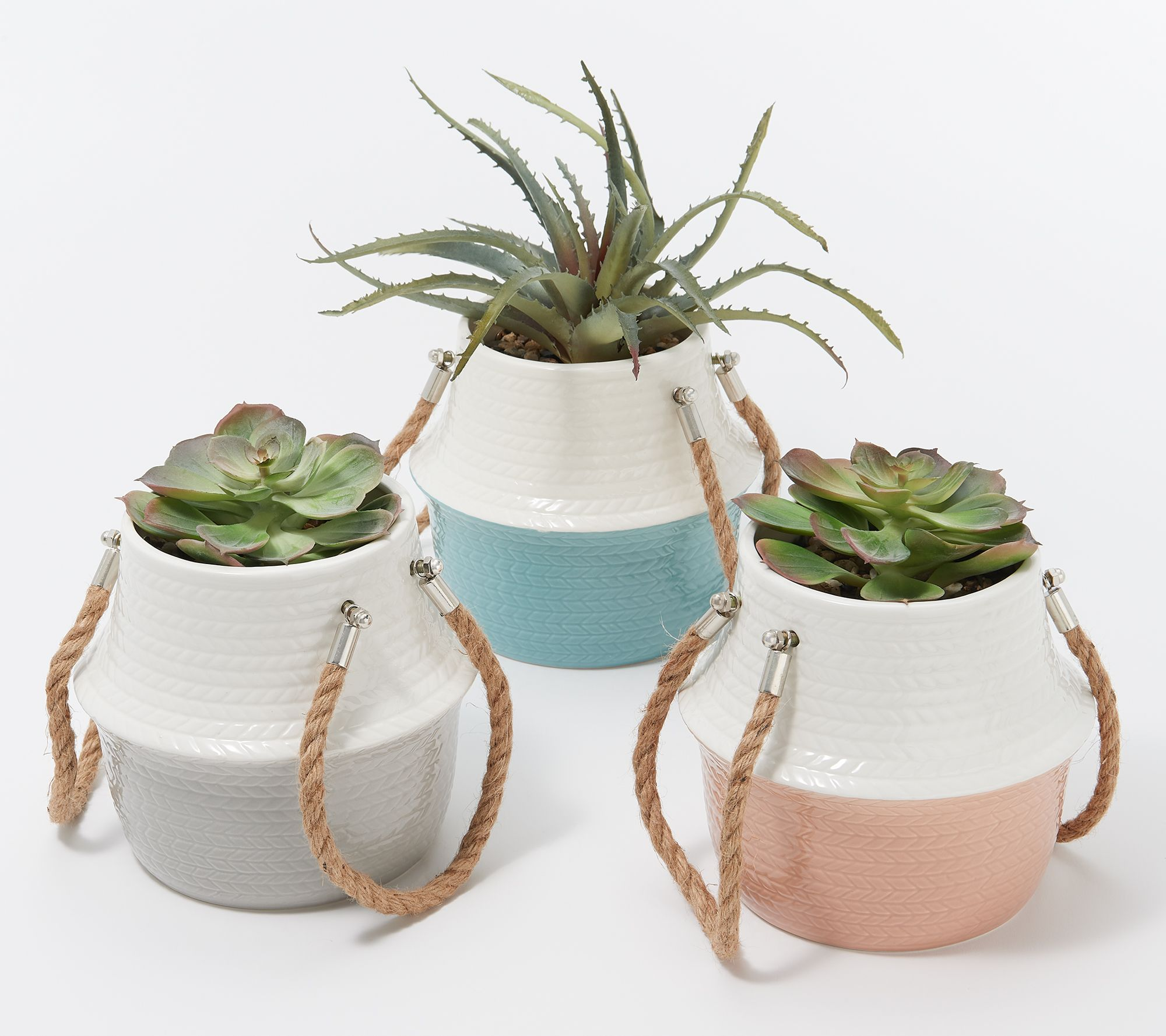 Home Reflections Set Of 3 Potted Faux Succulents Qvc Com