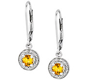 Sterling Round Faceted Birthstone Lever Back Earrings - J336701