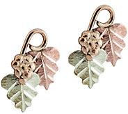 Black Hills Gold Grape and Leaf Post Earrings 10K/12K/14K - J388803