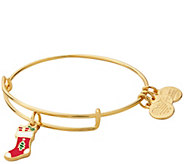 Alex and Ani Stocking Charm Bangle - J384807