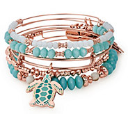Alex and Ani Go With the Flow Color Infusion Set of 5 Bangles - J384809