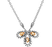 Carolyn Pollack Brilliant Choice of Colors Plaque Necklace - J376612