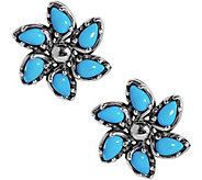 Carolyn Pollack Sleeping Beauty Turquoise Button Earrings - J383512