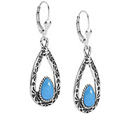 American West Gemstone Teardrop Dangle Earrings - J379622