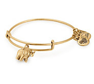 Alex and Ani Elephant Bangle -Friends of JaclynFoundation - J381524