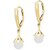 EternaGold Gemstone Petal Drop Earrings, 14K Gold - J386225
