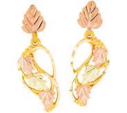 Black Hills Swirling Vine Earrings 10K/12K - J379426