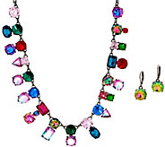 LOGO Links by Lori Goldstein Color Crush Necklace & Earring Set - J353927