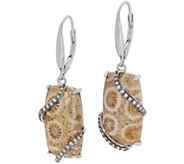 Fossilized Coral Drop Earrings, Sterling Silver - J357136