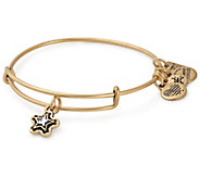 Alex and Ani True Wish Charm Bangle - Make-A-Wish Foundation - J381542