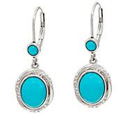 Sleeping Beauty Turquoise Sterling Drop Earrings - J347748