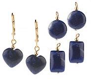 Lee Sands Interchangeable Sodalite Earrings - J302749