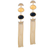 Daniela Coaro Gemstone Fringe Earrings, 14K Gold - J357849