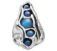 Hagit Sterling Labradorite Ring - J379452