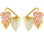 Black Hills Leaf Post Earrings 10K/12K - J377454