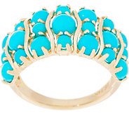 Sleeping Beauty Turquoise 14K Gold Band Ring - J355360