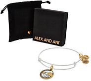 Alex and Ani Hand in Hand Charm Bangle - J383965