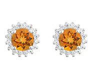 14K White Gold Round Gemstone Halo Stud Earrings - J382566