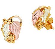 Black Hills Leaf Post Earrings, 10K/12K Gold - J392466