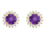 14K Gold Round Gemstone Halo Stud Earrings - J382568