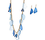 Linea by Louis DellOlio Beach Glass Necklace and Earring Set - J335577