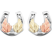 Black Hills Horseshoe Earrings Sterling /12K - J377480