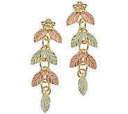 Black Hills Post Dangle Earrings, 10K/12K Gold - J392484