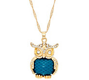 C. Wonder 28 Necklace with Novelty Owl Pendant - J331285