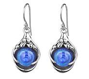 Kalos by Hagit Sterling Pools of Color Glass Drop Earrings - J337487