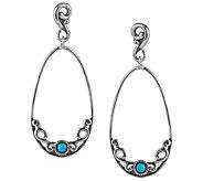 Carolyn Pollack Sleeping Beauty Turquoise Dangle Earrings - J341789