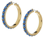 As Is Wendy Williams Intricate Enamel & Facet Hoop Earrings - J351593
