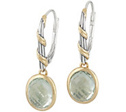 Peter Thomas Roth Sterling & 18K Clad Gemstone Earrings - J356996