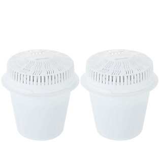 Ships 6/10 Little Luxury Set of 2 Replacement Water Filters