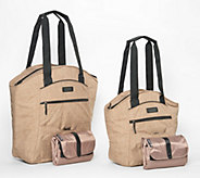California Innovations 4 pc Thermal Insulated Bag & Tote Set - K47095