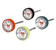 CDN Steak Thermometer ST170 - K132698