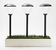 Sterno Home Set of 6 Roaming Solar Pathway Light Set - M65806