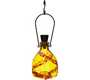 Painted Glass Solar Wasp Catcher by Evergreen - M52134