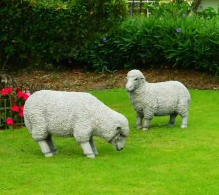 Plow U0026 Hearth All Weather Resin Sheep Garden Statue   Page 1 U2014 QVC.com