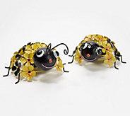 Set of 2 Solar Flower Garden Bugs by Exhart - M60447