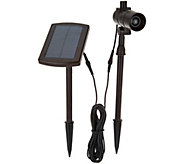 Energizer Color on Demand Solar Spot/Flood Light with Pole - M55949