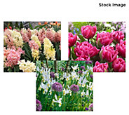 Robertas 252-Piece Symphony of Spring Garden - M60270