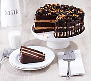 Davids Cookies 10 6.75-lb Peanut Butter Explosion Cake - M60473