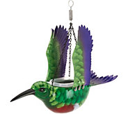 WindyWings Hanging Bird Feeder and Planter - M51881