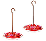 Ultimate Innovations Set of 2 Flat Hummingbird & Bird Feeders - M55586