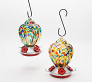 Ultimate Innovations Set of 2 Glass Hummingbird Feeders - M55588