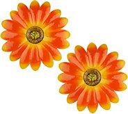 Ultimate Innovations Set of 2 Wall and Fence Flowers - M55592