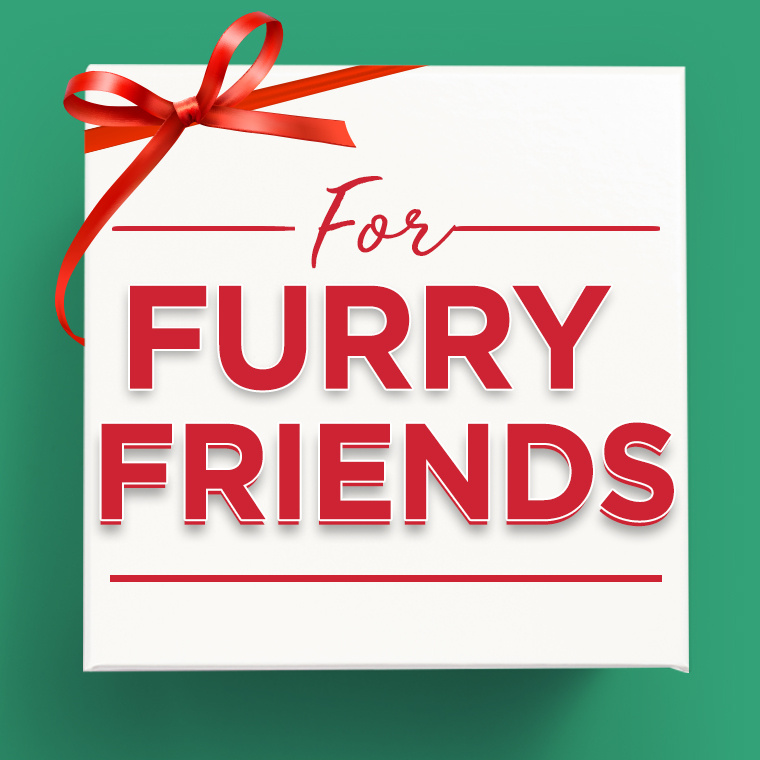 For Furry Friends