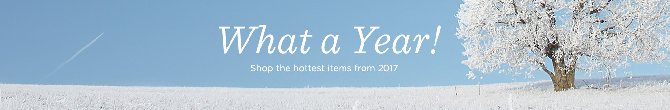 What a Year!  Shop the hottest items from 2017.