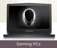 Dell(TM) Alienware Laptop