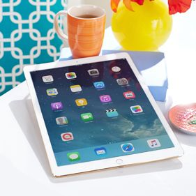 Apple® iPad®